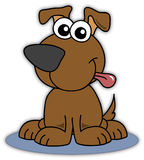 собака Бенни Стоковые Изображения