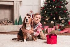 Собака бигля обнимать мальчика на рождестве Стоковое Изображение RF