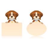 Собака бигля Стоковое Изображение RF