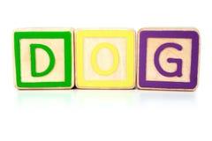 собака блоков Стоковые Изображения