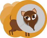 собака ворота Стоковое фото RF