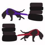 Собака вытягивая иллюстрацию вектора спорта Стоковое Изображение RF