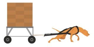 Собака вытягивая иллюстрацию вектора спорта Стоковые Фото
