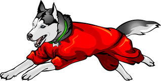 Собака в прозодеждах бесплатная иллюстрация
