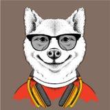 Собака в стеклах и наушниках также вектор иллюстрации притяжки corel Стоковое фото RF