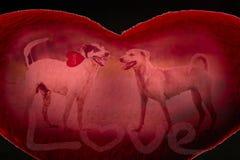 Собака влюбленности Стоковая Фотография RF