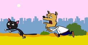 Собака гоня кот Стоковые Фотографии RF