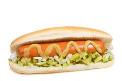 собака горячая Стоковое Изображение