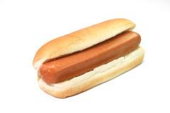 собака горячая Стоковые Изображения RF