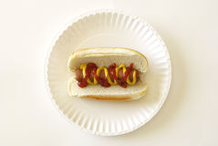 собака горячая Стоковая Фотография
