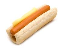 собака горячая Стоковое Изображение RF