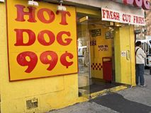 собака горячая Стоковое Фото