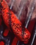собака горячая Стоковая Фотография RF