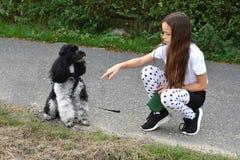 Собака девушки и пуделя Стоковое Изображение