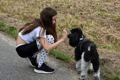 Собака девушки и пуделя Стоковая Фотография