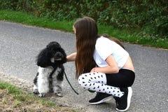 Собака девушки и пуделя Стоковые Изображения RF