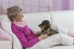 собака держа старшую женщину софы стоковое изображение