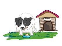 Собака ест еду Стоковое Фото