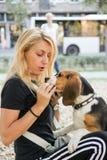 Собака женщины держа и подавая бигля щенка Стоковые Фотографии RF