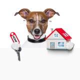 Дом и ключ собаки знамени Стоковая Фотография