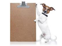 собака знамени Стоковые Фотографии RF