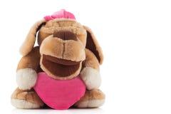Собака игрушки плюша на белой предпосылке Стоковое фото RF
