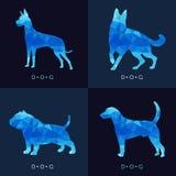 Собака - дизайн голубого низкого поли вектора установленный Стоковое Изображение RF