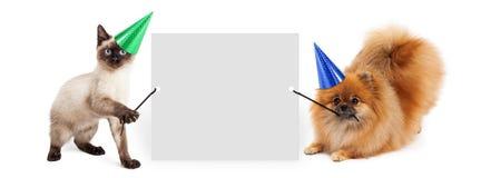 Собака и кошка партии задерживая знамя Стоковая Фотография