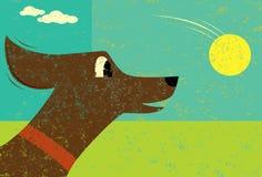 Собака и шарик Стоковые Изображения