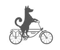 Собака иллюстрации вектора смешная Стоковые Фотографии RF
