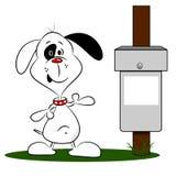 Собака и ящик шаржа Стоковое фото RF