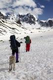 Собака и 2 hikers в снежных горах Стоковые Изображения RF