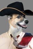 Собака ковбоя Стоковое Изображение