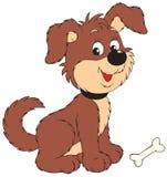 собака косточки Стоковые Изображения