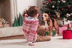 Собака мальчика и бигля на рождестве Стоковые Фото