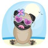 Собака мопса на пляже бесплатная иллюстрация