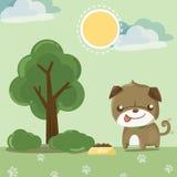 Собака мопса симпатичная Стоковые Изображения RF