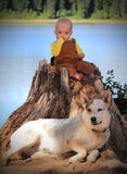 собака младенца Стоковая Фотография RF
