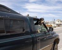 Собака на окне автомобиля Стоковая Фотография
