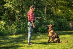 Собака немецкой овчарки поезда молодой женщины, который нужно сидеть стоковая фотография rf