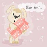 собака дня рождения счастливая Стоковые Фото