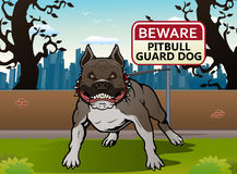 Собака питбуля Стоковое Фото