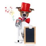 Собака поя с микрофоном стоковое фото rf