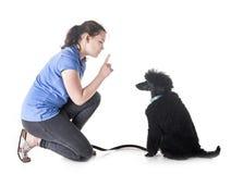 Собака, предприниматель и повиновение стоковые изображения rf
