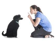 Собака, предприниматель и повиновение стоковое фото rf