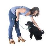 Собака, предприниматель и повиновение стоковые изображения