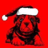 Собака при нарисованная рука шляпы Санта Клауса Стоковые Фотографии RF