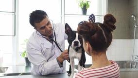 Собака профессионального мужского ветеринара рассматривая маленькой девочки на его офисе стоковое изображение