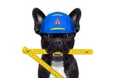 Собака разнорабочего Стоковые Изображения RF