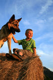 собака ребенка Стоковая Фотография RF